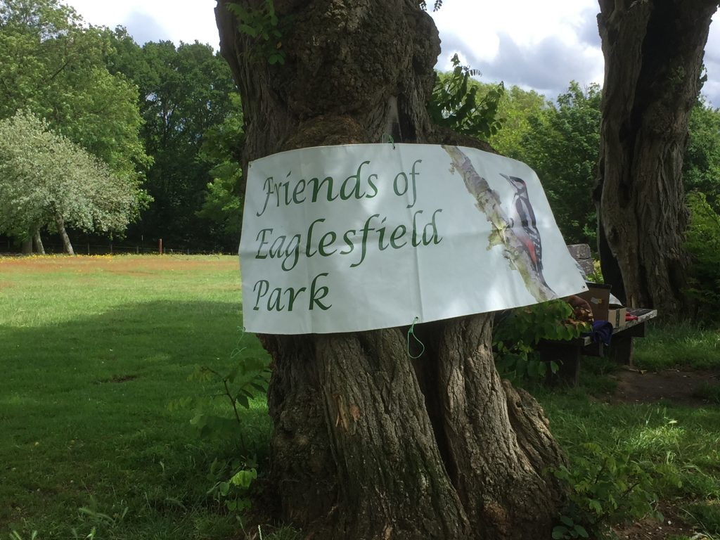 Eaglesfield Park Parkfest